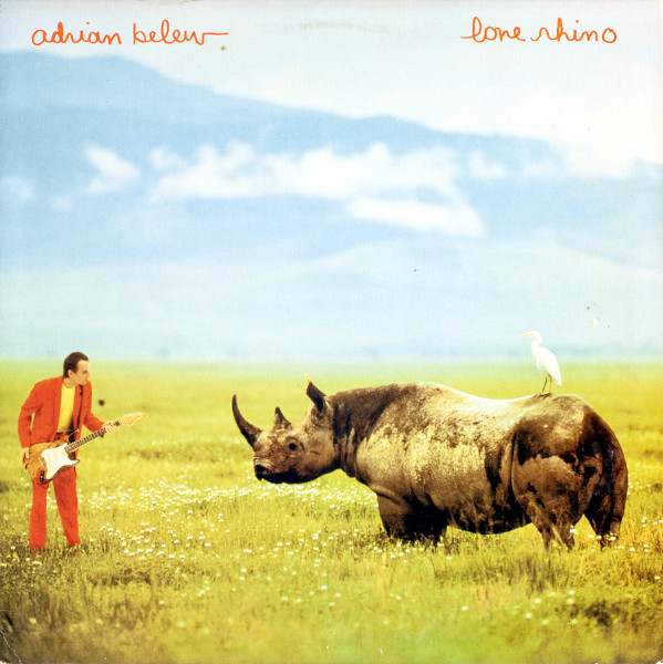 Lone Rhino album cover