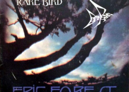 Epic Forest album cover