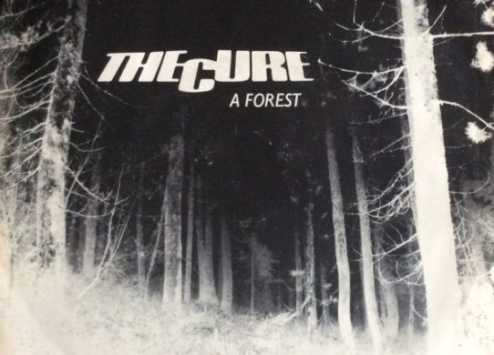 A Forest 45 rpm picture sleeve
