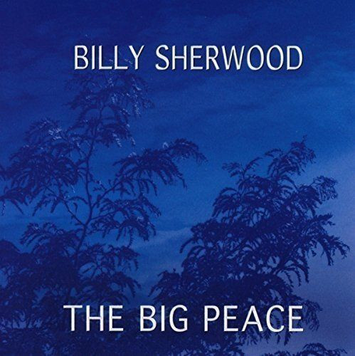 The Big Peace album cover