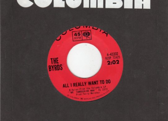 All I Really Want To Do 45 rpm single