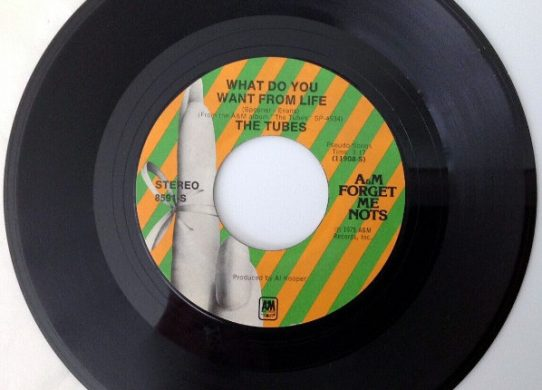 What Do You Want From Life 45 rpm single