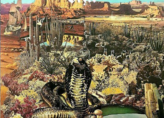 The Serpent Is Rising album cover
